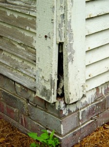 "One indicator of a potential lead paint hazard is the visual appearance of scaling or ""alligatoring""."